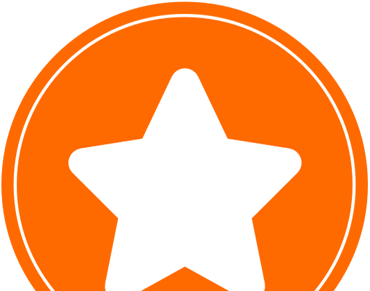 enCode reView Services Icon